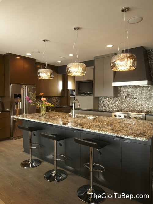 30f1f6850f317a43_1194-w500-h666-b0-p0-contemporary-kitchen