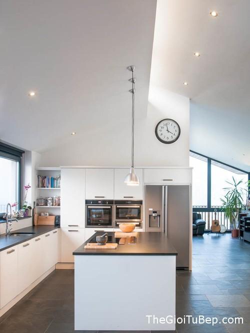 22510a0d07476095_6269-w500-h666-b0-p0-contemporary-kitchen